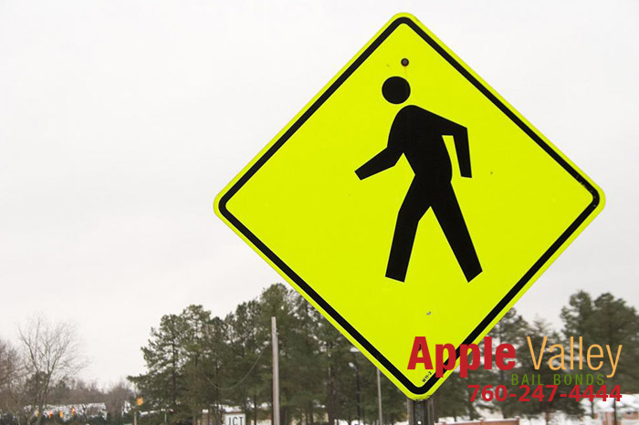 School Zone Ahead: Keep an Eye out for Kids